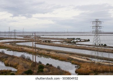 San Francisco bay marshes and waterways, Sunnyvale, California