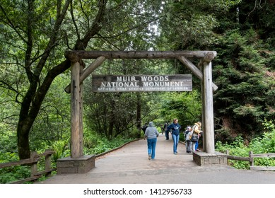 San Francisco, CA/ USA- 9 May 2019: Muir Woods National Monument is part of California's Golden Gate National Recreation Area, north of San Francisco, known for its towering old-growth redwood trees.