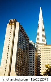 San Francisco, CA USA August 20, 2008 The Transamerica Pyramid rises over the smaller neighboring buildings in downtown San Francisco