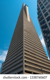 San Francisco, CA / USA - August 21st, 2017: The Transamerica Pyramid at Financial District