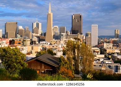 San Francisco, CA, USA July 14, 2015 The Transamerica Pyramid in San Francisco rises over the tower in the city's business district