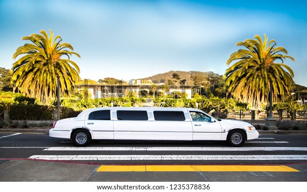 San Francisco, CA, USA - May 28, 2018: White luxury limousine on pedestrian crossing, two Mexican fan or California palm trees (Washingtonia Filifera or Robusta) in green park. Illustrative editorial.