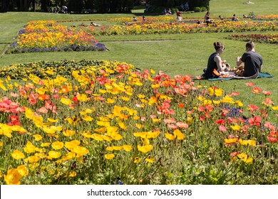 San Francisco, California - March 15, 2016: People relaxing and picnicking in famous Golden Gate Park in San Francisco in the Spring with flowers blooming