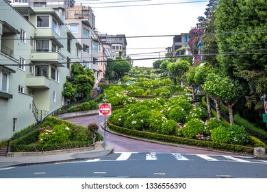 San Francisco, California, USA - June 2017: Lombard Street seen from straight down the road with no cars.