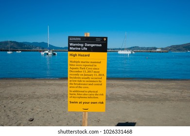 SAN FRANCISCO, CA/USA - FEBRUARY 03, 2018: Warning sign posted at Aquatic Park Cove in San Francisco warning swimmers to beware of marine life after several swimmers were bitten by a sea lion