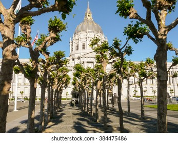 San Francisco City Hall Civic Center, in front rows of the trees.