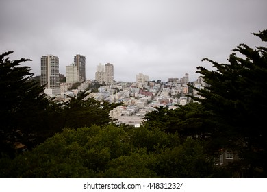 San Francisco city-scape with trees on an overcast day, subdued tones