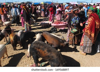 SAN FRANCISCO DEL ALTO, GUATEMALA -  NOVEMBER 29: animals vendors are wearing  traditional colored clothes at the market , on November 29, 2013, in San Francisco Del Alto, Guatemala.