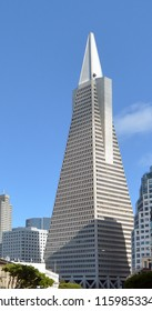 SAN FRANCISCO - MAY 16 2015: Transamerica Pyramid in San Francisco CBD. At 853 feet (250 meter) tall the Transamerica Pyramid is the tallest skyscraper in the San Francisco skyline.