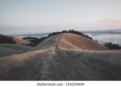 San Francisco Mt. Tam