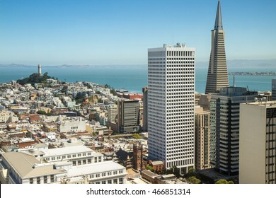 San Francisco skyline, CA, USA. TransAmerica Pyramid in foreground, Coit Tower in distance, clear blue sky and bay islands in background. Vantage point is the financial district. Rooftop perspective.
