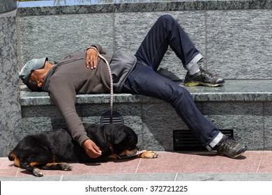 San Francisco, USA - July 24 2010: Homeless Man Sleeping on A Park Bench. The Rottweiler dog sleeps on the floor