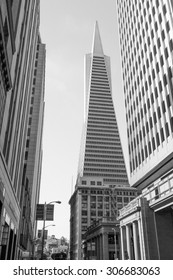 SAN FRANCISCO, USA - JULY 31, 2014: View of the city of San Francisco in California USA in black and white