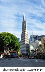 San Francisco, USA - November 9, 2015: Transamerica Pyramid in San Francisco