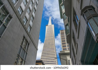 San Francisco,California, USA - April 17, 2018 : View of the Transamerica Pyramid building in San Francisco ,CA on April 17, 2018.