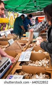 SAN FRANCISCO-May 9, 2017: Farmer's market customer at an organic mushroom seller. She asks the vendor about a rare variety called Lion's Mane, known for medicinal properties. At the SF Ferry Building