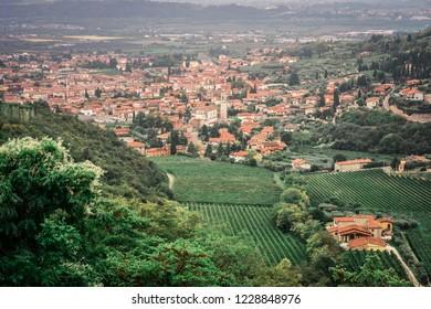 San Giorgio di Valpolicella, Italy - view of fields of Amarone vineyards