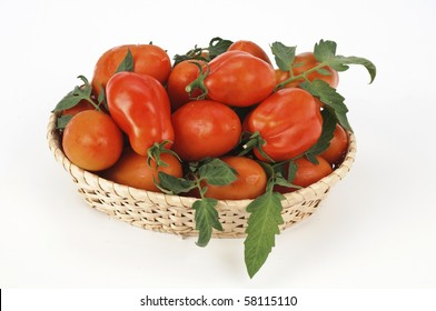 San Marzano tomatoes in the basket