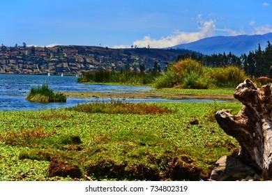 San Pablo Lake/Laguna de San Pablo. Otavalo, Imbabura,Ecuador, South America.