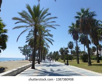 San Pedro Alcantara, town of Marbella Malaga. Andalusia,Spain