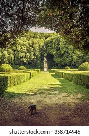 SAN QUIRICO D'ORCIA, ITALY - JUNE 27, 2015: The Leonini Gardens with a statue in the background in San Quirico d'Orcia, Tuscany