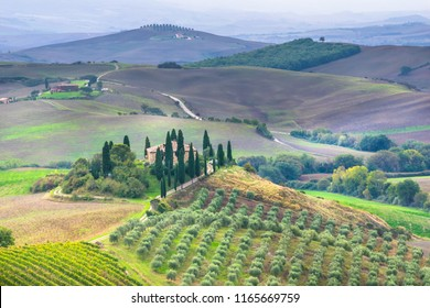 San Quirico d'Orcia,  Italy - October, 14, 2016 - Beautiful dawn in Val d'Orcia  with Podere Belvedere farmhouse, one of the most famous places in Tuscany.