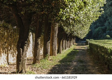 SAN QUIRICO D'ORCIA, ITALY - OCTOBER 30, 2016 - View of the Orti Leonini in San Quirico d'Orcia, Val d'Orcia, Tuscany, Italy