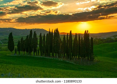 At San quirico d'Orcia - On april 2017 - Landscape of tuscan countryside, Val d'Orcia, Siena