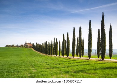 San Quirico d'Orcia, Tuscany, Italy. May, 22, 2017. A farmhouse near San Quirico d'Orcia during springtime, with green hills and cypresses.