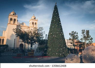 San Salvador Cathedral and Christmas decorations. San Salvador, El Salvador.