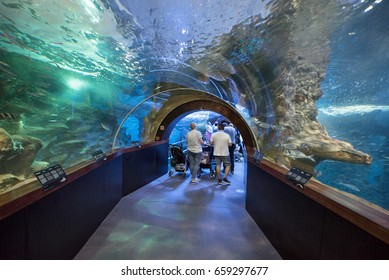 San Sebastian, Spain - June 10, 2017: People visiting famous San Sebastian Aquarium, Basque country, Spain.
