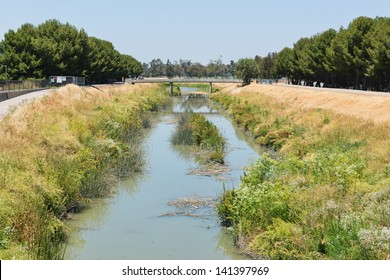 San Tomas Aquino Creek in summer, Santa Clara, California