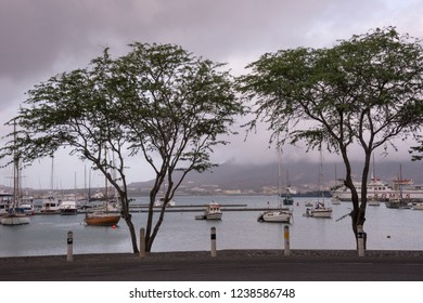 San Vicente, Cape Verde - September 29, 2015: Walk with trees in the maritime avenue of the city of MIndelo, and view of sailboats moored in the bay, in a cloud day