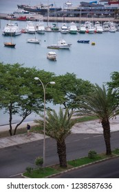 San Vicente, Cape Verde - September 29, 2015: Aerial view of the promenade with trees in the maritime avenue of the city of MIndelo, and boats moored in the port in the background