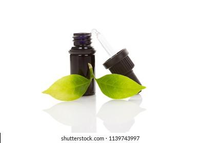 Sananga eye drops with tabernaemontana leaves isolated on white background. Healing sacred shamanic medical plants.