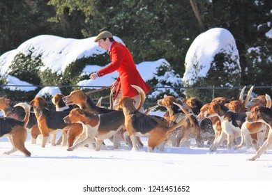 Holderness Hunt Images, Stock Photos & Vectors | Shutterstock