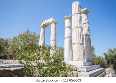 The Sanctuary of the Great Gods Temple Complex on the island of Samothrace