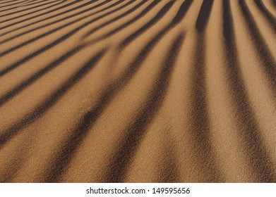 sand background with embossed