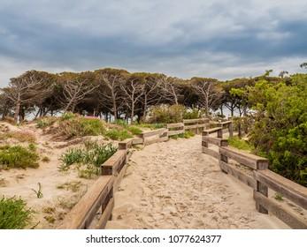 Sand beach near the town of Alghero, Sardinia island, Italy