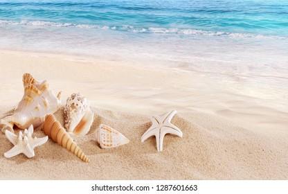 Sand beach sae background