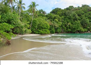 Sand beach and trees at Manuel Antonio Costa Rica