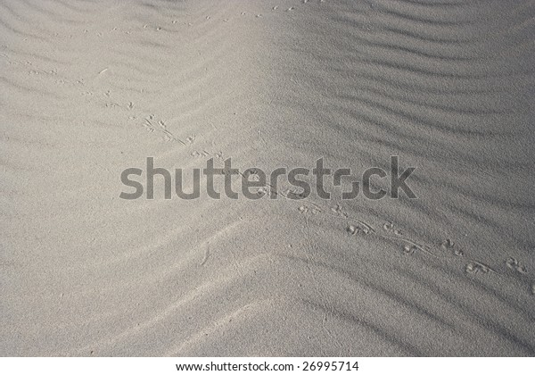 The sand blow by wind creates nice texture.