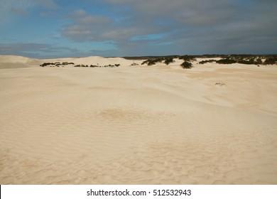Sand desert in Australia