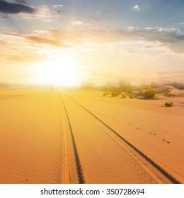 sand desert landscape at the sunset