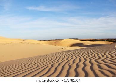 Sand desert landscape under bluy sky at sunny day