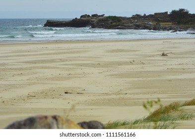 The sand of a deserted beach stretches towards a rock shelf in the distance. It is low tide. Some grasses and a rock are in the foreground.