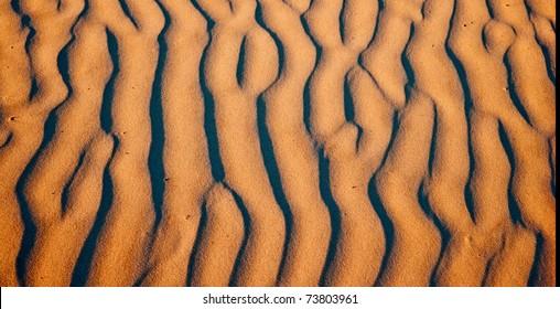 Sand Dune Abstract - Cumberland Island