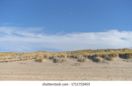 Sand dune with beach grass near Kampen on the island of Sylt