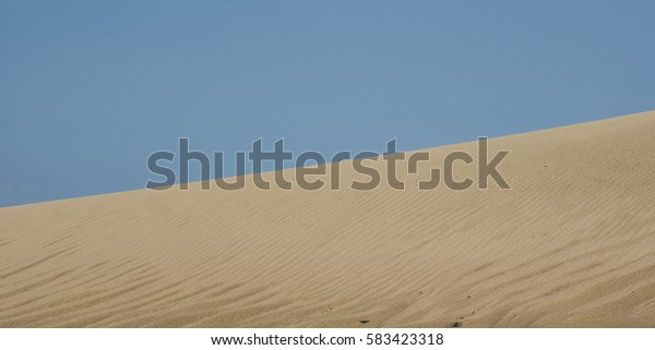 Sand dune in Curonian Spit, Lithuania
