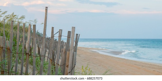 Sand dune fence in the foreground with a dragonfly setting on fence post.  Beach in the background.  Shallow depth of field so foreground is in focus.